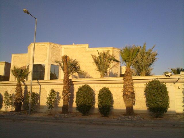 فيلا للبيع@حي النخيل الغربي@المساحة 900 م2 5942.imgcache.jpg