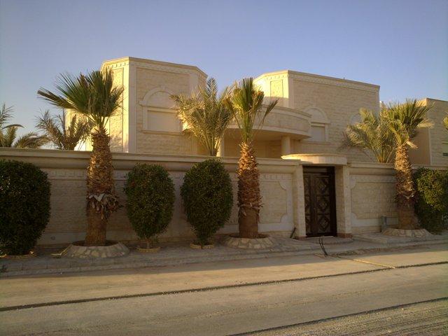 فيلا للبيع@حي النخيل الغربي@المساحة 900 م2 5943.imgcache.jpg