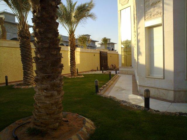 فيلا للبيع@حي النخيل الغربي@المساحة 900 م2 5945.imgcache.jpg