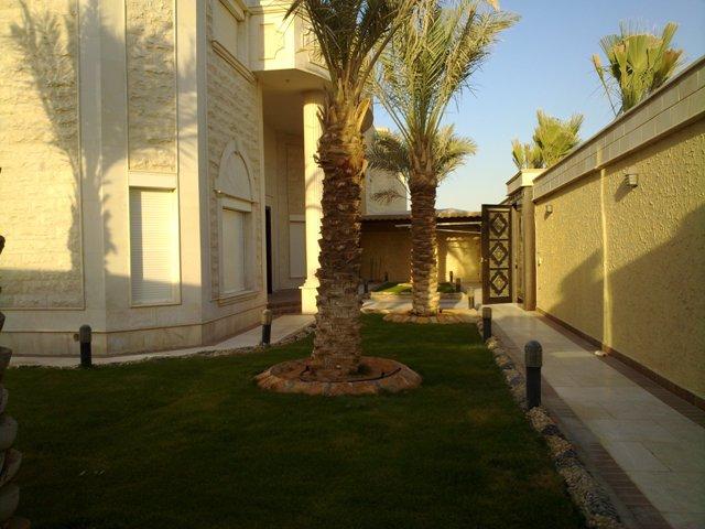 فيلا للبيع@حي النخيل الغربي@المساحة 900 م2 5946.imgcache.jpg