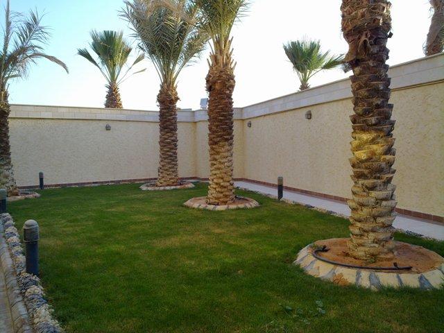 فيلا للبيع@حي النخيل الغربي@المساحة 900 م2 5976.imgcache.jpg